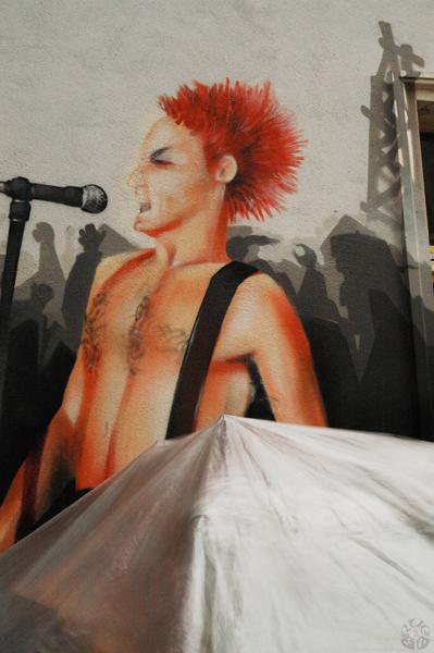 005_punks not dead