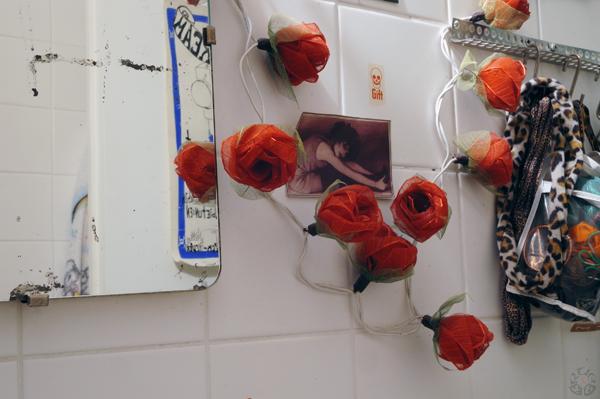 019_roses beside